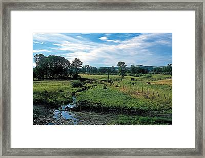 Pastoral 2 Framed Print by Terry Reynoldson