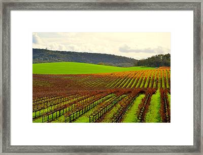 Pastoral Vineyards Of Asti Framed Print