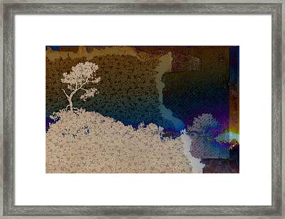 Pastorale Wishes Framed Print by Jan Amiss Photography