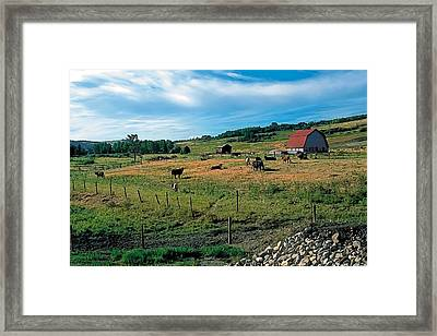 Pasture 2 Framed Print by Terry Reynoldson