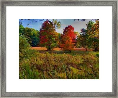 Pasture Gone Fallow Framed Print