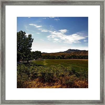 Pasture Lands Framed Print
