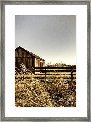 Pasture Framed Print by Margie Hurwich