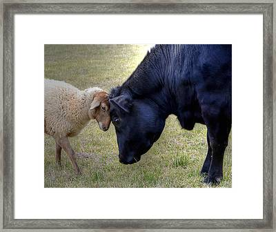 Pasture Pals Framed Print
