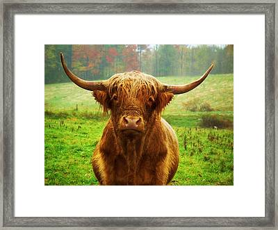 Pasture Portrait Framed Print