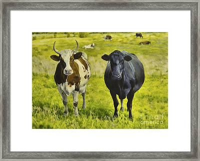 Pasture Framed Print by Veikko Suikkanen