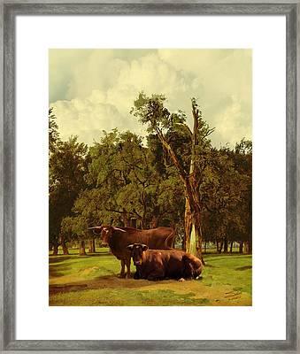 Pastureland Framed Print