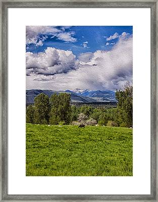 Pastures And Clouds  Framed Print by Omaste Witkowski