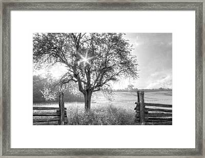 Pastures In Black And White Framed Print