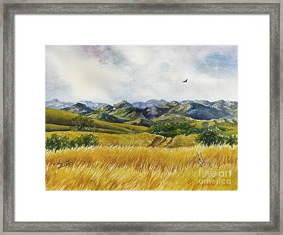 Patagonia Just Down The Valley Framed Print