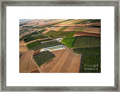 Patches Of Color Framed Print by Arik Baltinester