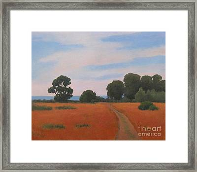 Path At Carpinteria Bluffs Framed Print by Jennifer Boswell