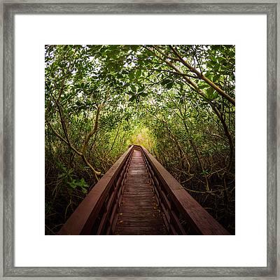 Path Framed Print by Carl Engman