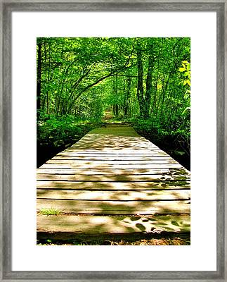 Path Framed Print