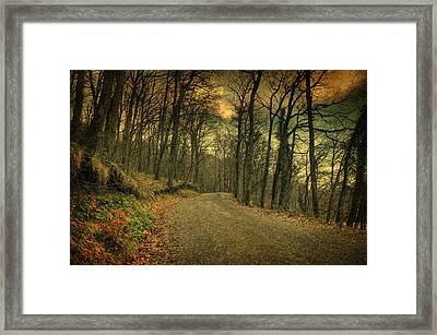 Path IIi Framed Print by Taylan Apukovska