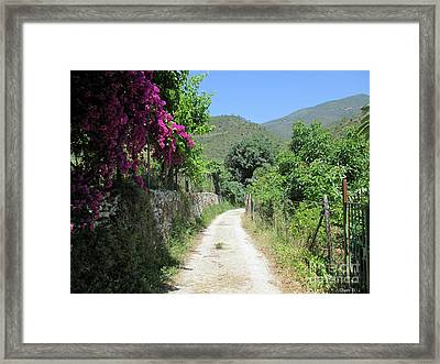 Path In Istan Framed Print