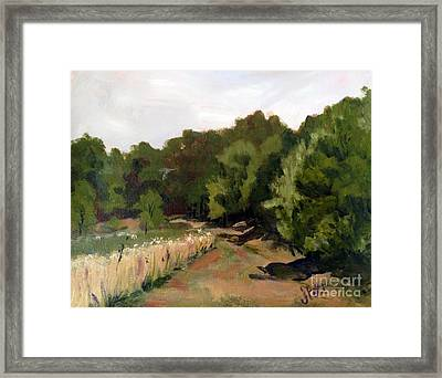Path In The Field Framed Print