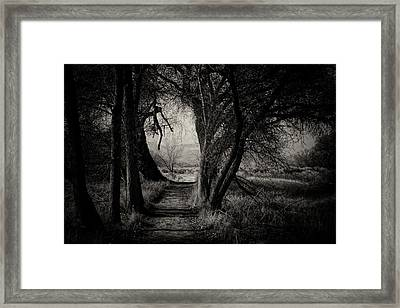 Path- Kern River Preserve Framed Print