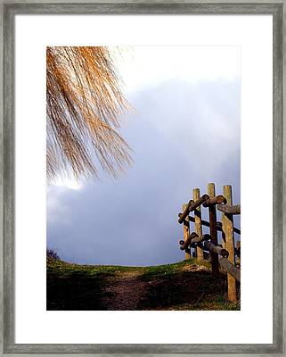 Framed Print featuring the photograph Path by Michael Dohnalek