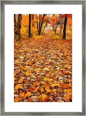 Path Of Fallen Leaves Framed Print by Edward Fielding