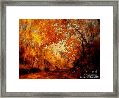 Path Of Gold Framed Print