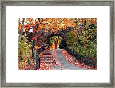 Path Of Leaves Framed Print