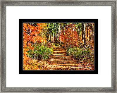 Framed Print featuring the photograph Path Of Life by Michaela Preston