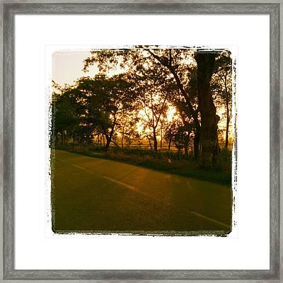 Path Of Life Framed Print by Prashant Ambastha