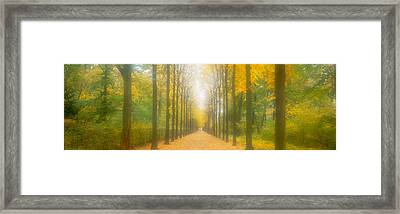 Path Schwetzingen Germany Framed Print by Panoramic Images