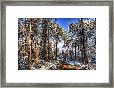 Path Throw The Snow Framed Print