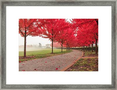 Path To Apotheosis Framed Print