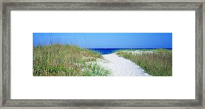 Path To Beach, Venice, Florida, Usa Framed Print by Panoramic Images
