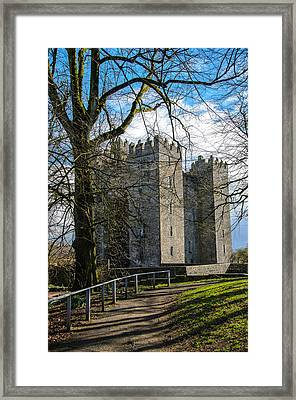 Path To Bunratty Castle Framed Print by AMB Fine Art Photography
