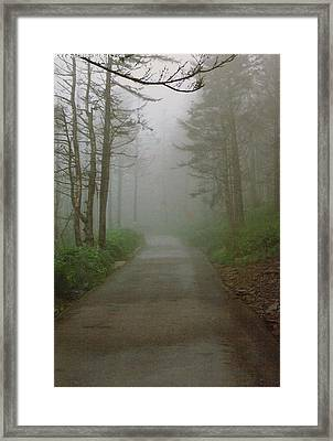 Path To Clingmans Dome Framed Print
