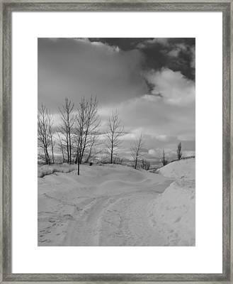Path To Enlightenment Framed Print by Dan Sproul