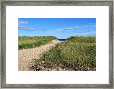 Path To Heaven Framed Print by Brenda Burns