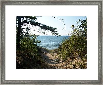 Path To Lake Michigan Framed Print