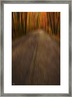 Path To Life Framed Print by Lourry Legarde