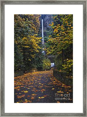 Path To Multnomah Falls Framed Print by Mark Kiver