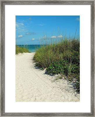 Path To Pass -a- Grille Framed Print