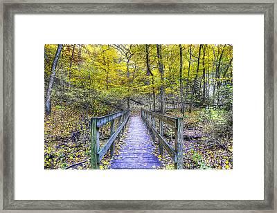 Path To Saint Louis Canyon Framed Print
