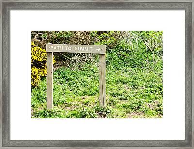 Path To Summit Framed Print