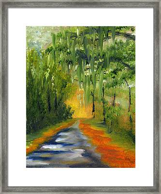 Path To The Beach Framed Print by Sherry Robinson