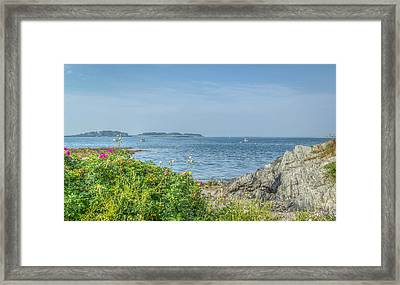 Framed Print featuring the photograph Path To The Cove by Jane Luxton