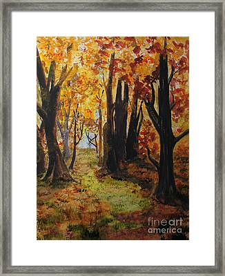 Path To The Edge Framed Print by Jack G  Brauer