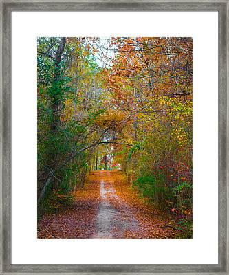 Path To The Fairies Framed Print
