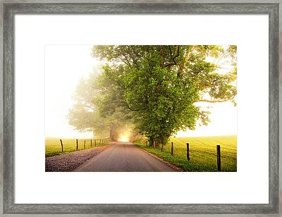 Path To  The Fog Framed Print by Andrew Soundarajan