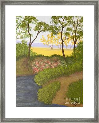 Path To The Meadow Framed Print