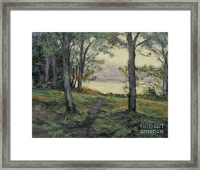Path To The Pond / Early Morning Framed Print by Gregory Arnett