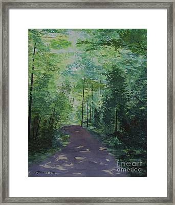 Path To The River Framed Print by Martin Howard